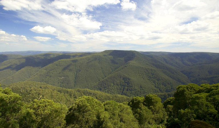 Barrington Tops National Park - Find Attractions
