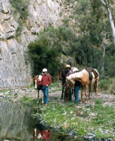 Yarramba Horse Riding - Find Attractions