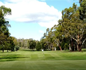 Cooma Golf Club - Find Attractions