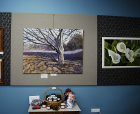 Monaro Art Groups Little Gallery - Find Attractions