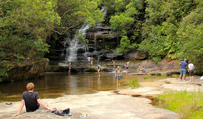 Somersby Falls picnic area - Find Attractions