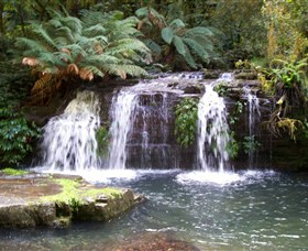 Barrington Tops National Park Walks - Find Attractions