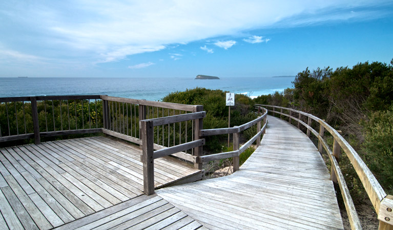Tea Tree picnic area and lookout - Find Attractions
