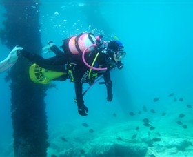 Shellharbour Scuba  Photography Centre - Find Attractions