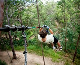 TreeTop Challenge - Find Attractions