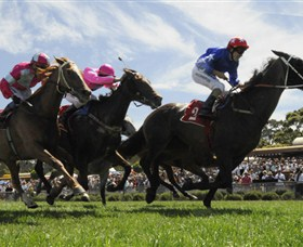 Moruya Racecourse - Find Attractions