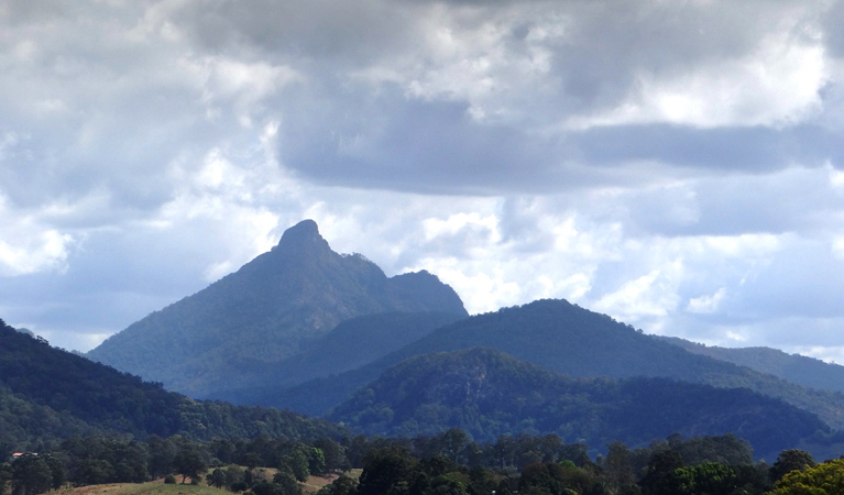 Wollumbin National Park - Find Attractions