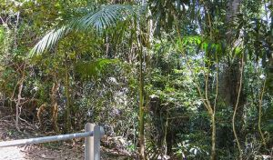 Goorgana walking track - Find Attractions