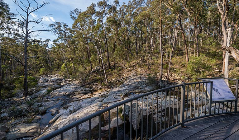 Myanba Gorge walking track - Find Attractions
