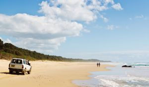 Bongil Bongil National Park - Find Attractions