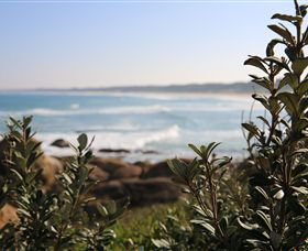 Cape Conran Coastal Park - Find Attractions