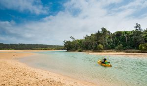 Moonee Beach Nature Reserve - Find Attractions