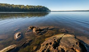 Queens Lake Nature Reserve - Find Attractions