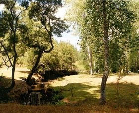 Oldina Picnic Area - Find Attractions