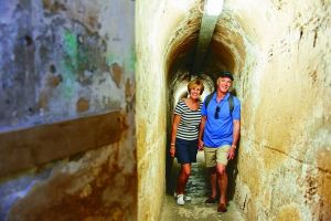 Rottnest Island Full-Day Trip With Guided Island Tour From Perth - Find Attractions