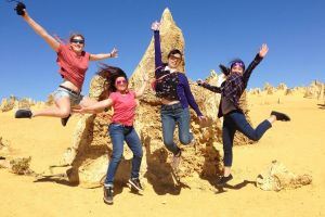 Pinnacles and Swan Valley Day Trip from Perth Including Caversham Wildlife Park Vineyard Lunch Pinnacles and Sandboarding - Find Attractions
