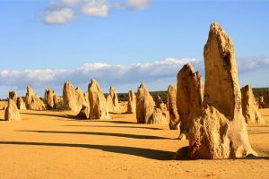 Pinnacles and Yanchep National Park Day Trip from Perth Including Lobster Shack Lunch and Sandboarding - Find Attractions