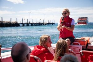 Rottnest Island Tour from Perth or Fremantle including Adventure Speed Boat Ride - Find Attractions