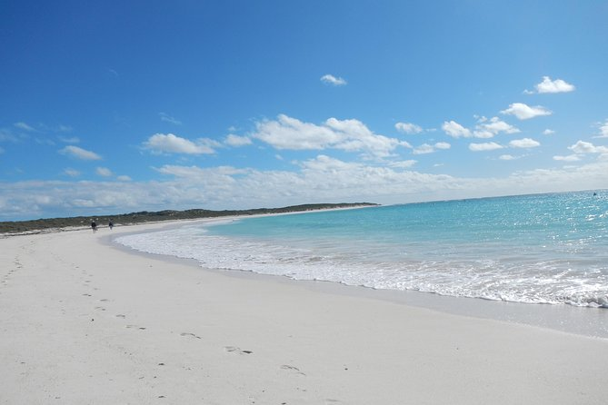 Abrolhos Islands Shipwreck Air and Land Tour from Geraldton - Find Attractions