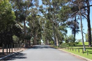 Claremont Heritage Tour from Perth - Find Attractions