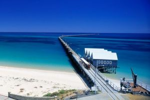 Full-Day Busselton Jetty Train Ride  Dophin Discovery - Find Attractions