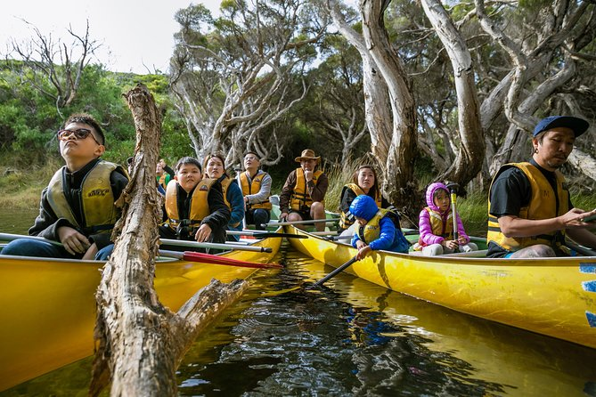 Margaret River Canoe Tour Including Lunch - Find Attractions