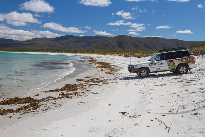 4X4 and Lunch Half Day Bicheno Coastal Mountain - Find Attractions