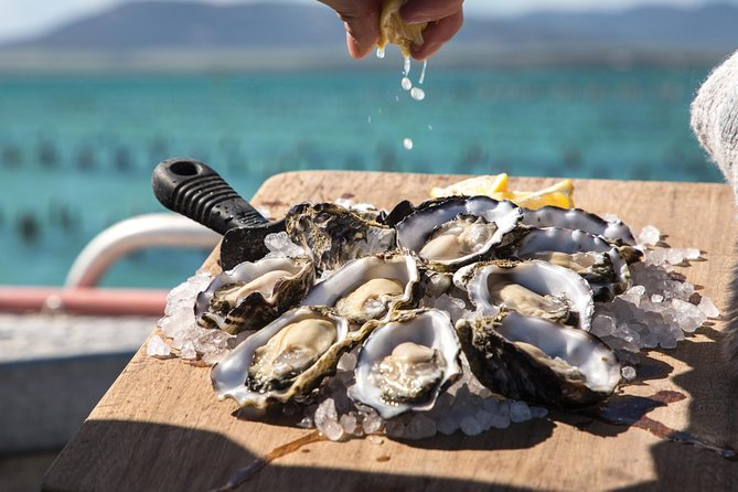 Pure Coffin Bay Oysters - Short and Sweet Oyster Farm Tour - Find Attractions
