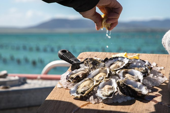 Pure Coffin Bay Oysters - Oyster Farm and Bay Tour - Find Attractions