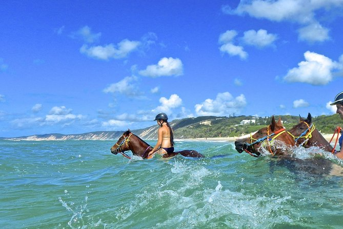Horse Swimming Ride from Rainbow Beach - Find Attractions