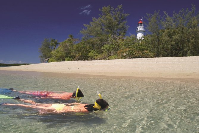 Wavedancer Low Isles Great Barrier Reef Sailing Cruise from Palm Cove - Find Attractions