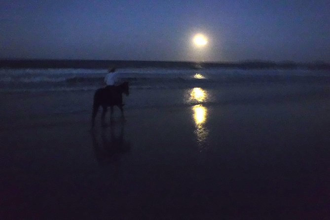 Full Moon Horse Ride at Rainbow Beach - Find Attractions