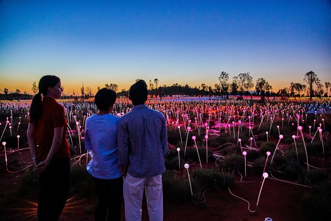 Uluru Field of Light Sunrise Tour - Find Attractions