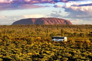 Alice Springs to Uluru Ayers Rock One Way Shuttle - Find Attractions
