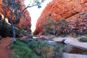 Half Day MacDonnell Ranges Small Group - Private Guided Tour - Find Attractions