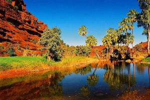 Palm Valley 4WD Day Tour - Find Attractions