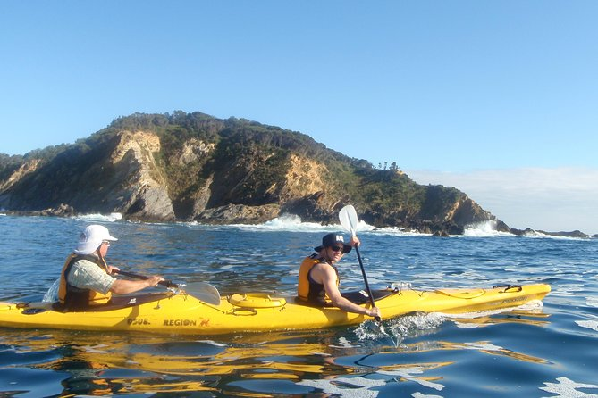 Full Day Sea Kayak Tour from Batemans Bay - Find Attractions