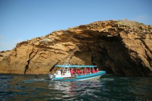 Hunter Coastal Adventure Tour by Boat from Newcastle - Find Attractions