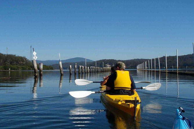 Oyster Kayak Tour from Batemans Bay - Find Attractions