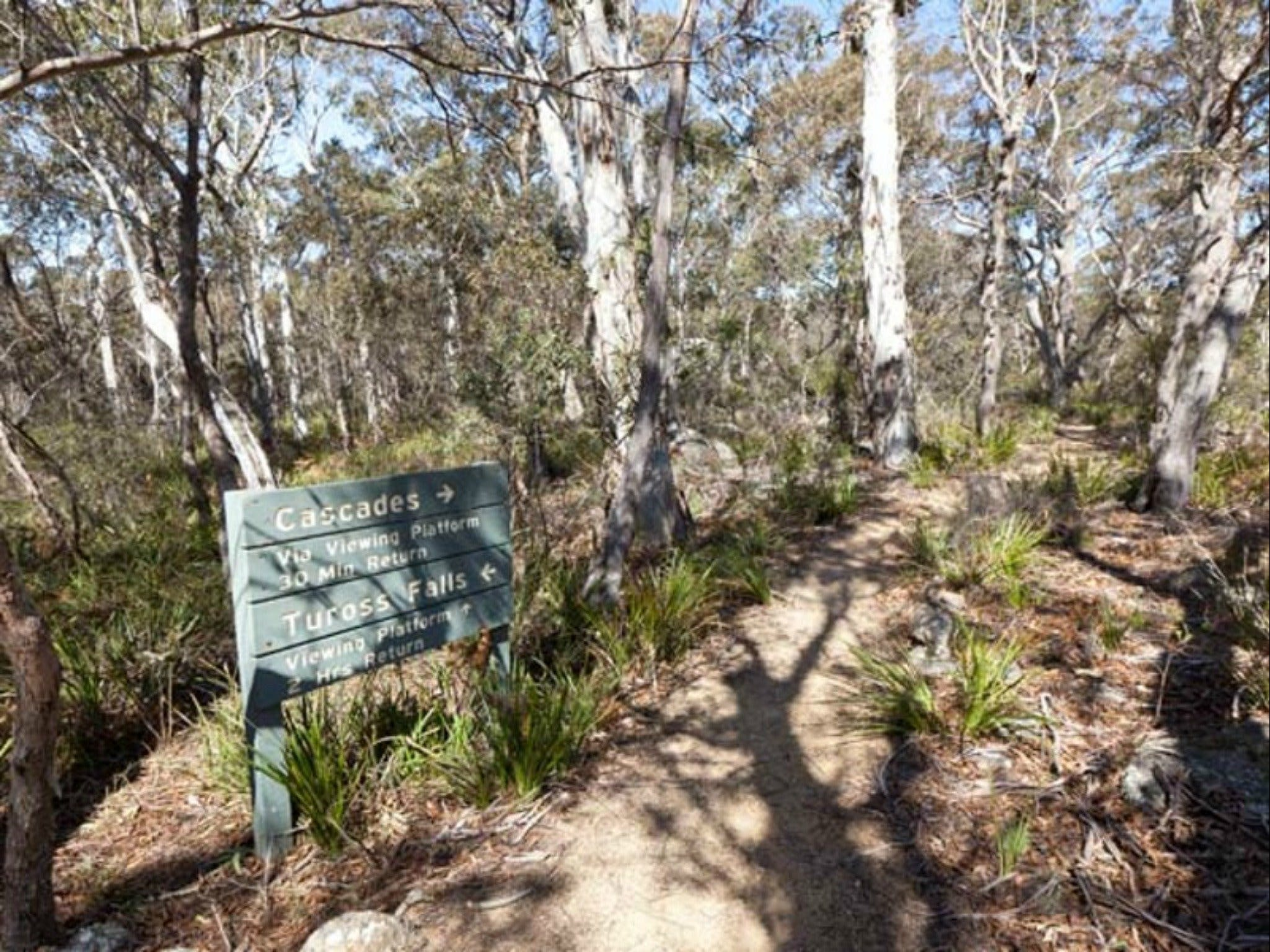 Cascades walking track and viewing platform - Find Attractions