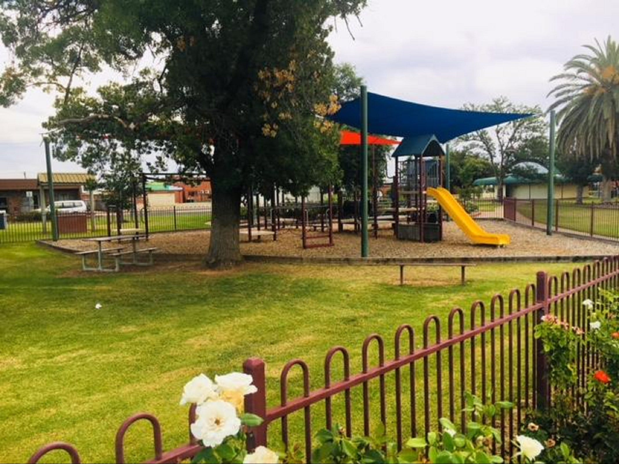 Cobram Mivo Park and Playground - Find Attractions