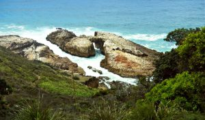 Diamond Head Loop Walk - Find Attractions