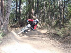 Jolly Nose Mountain Bike Park - Find Attractions