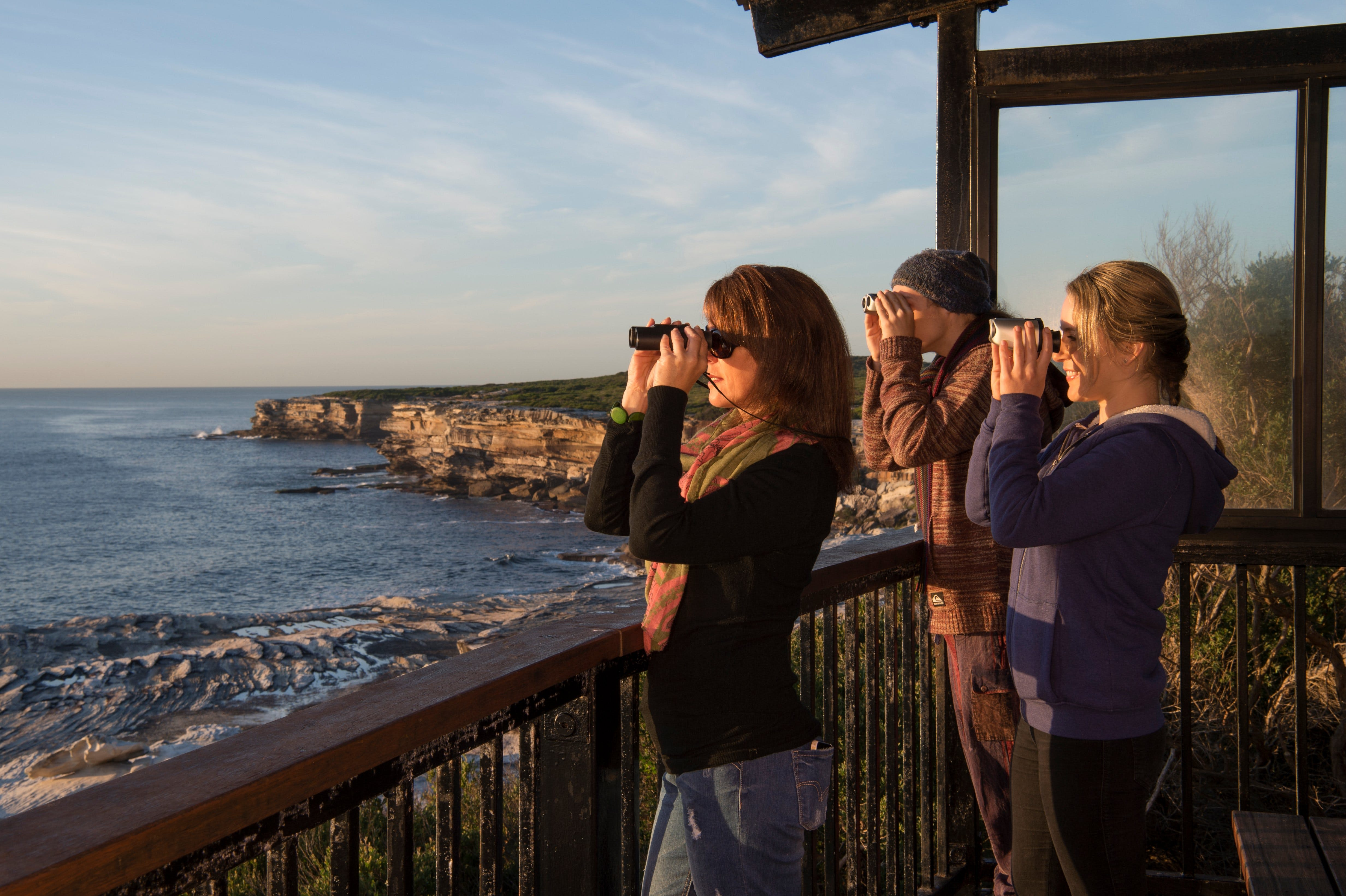 Sutherland Shire - Find Attractions