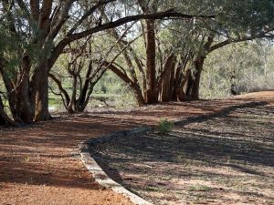 Warrego Floodplain walking track - Find Attractions