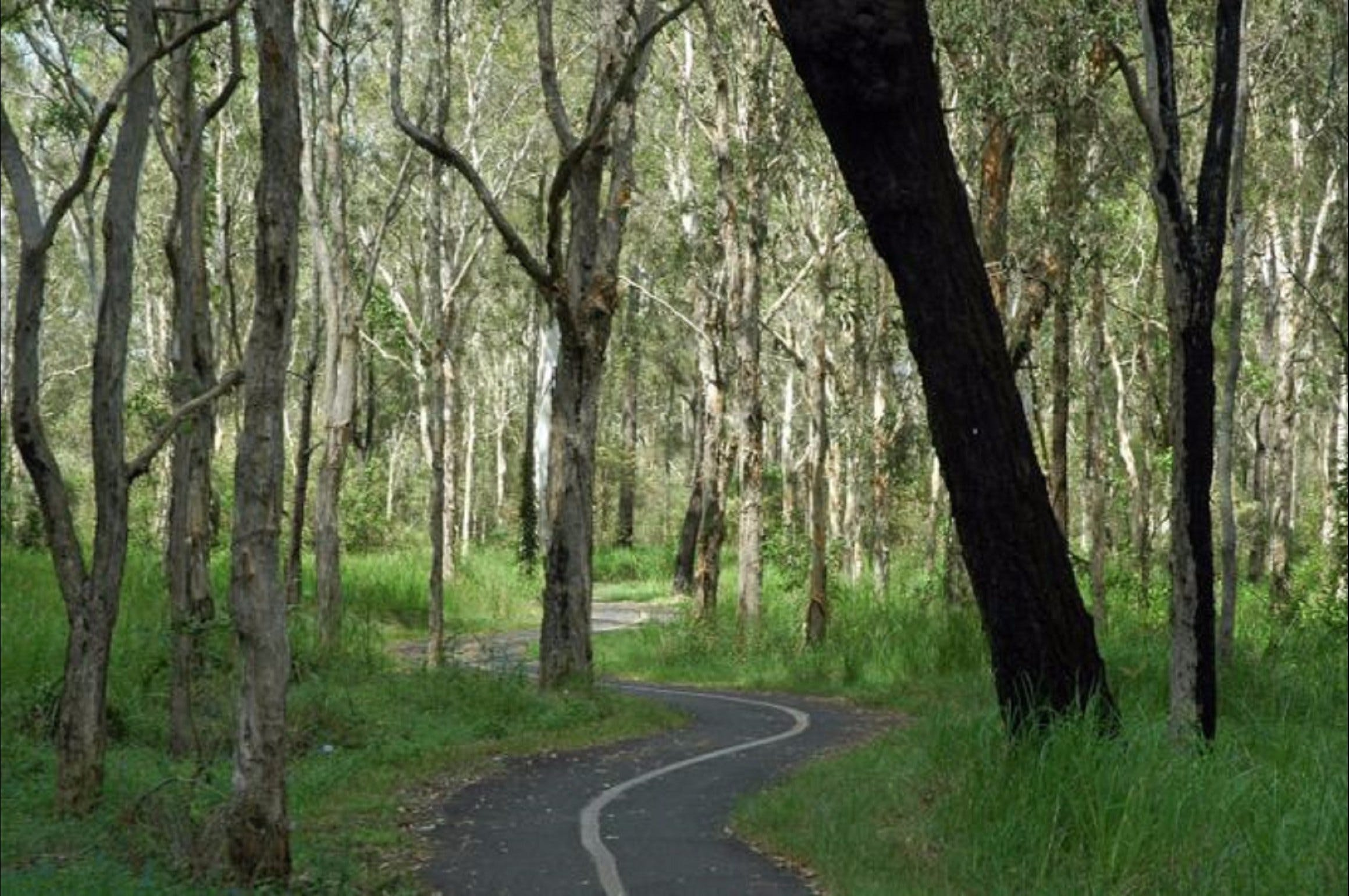 Boondall - Find Attractions