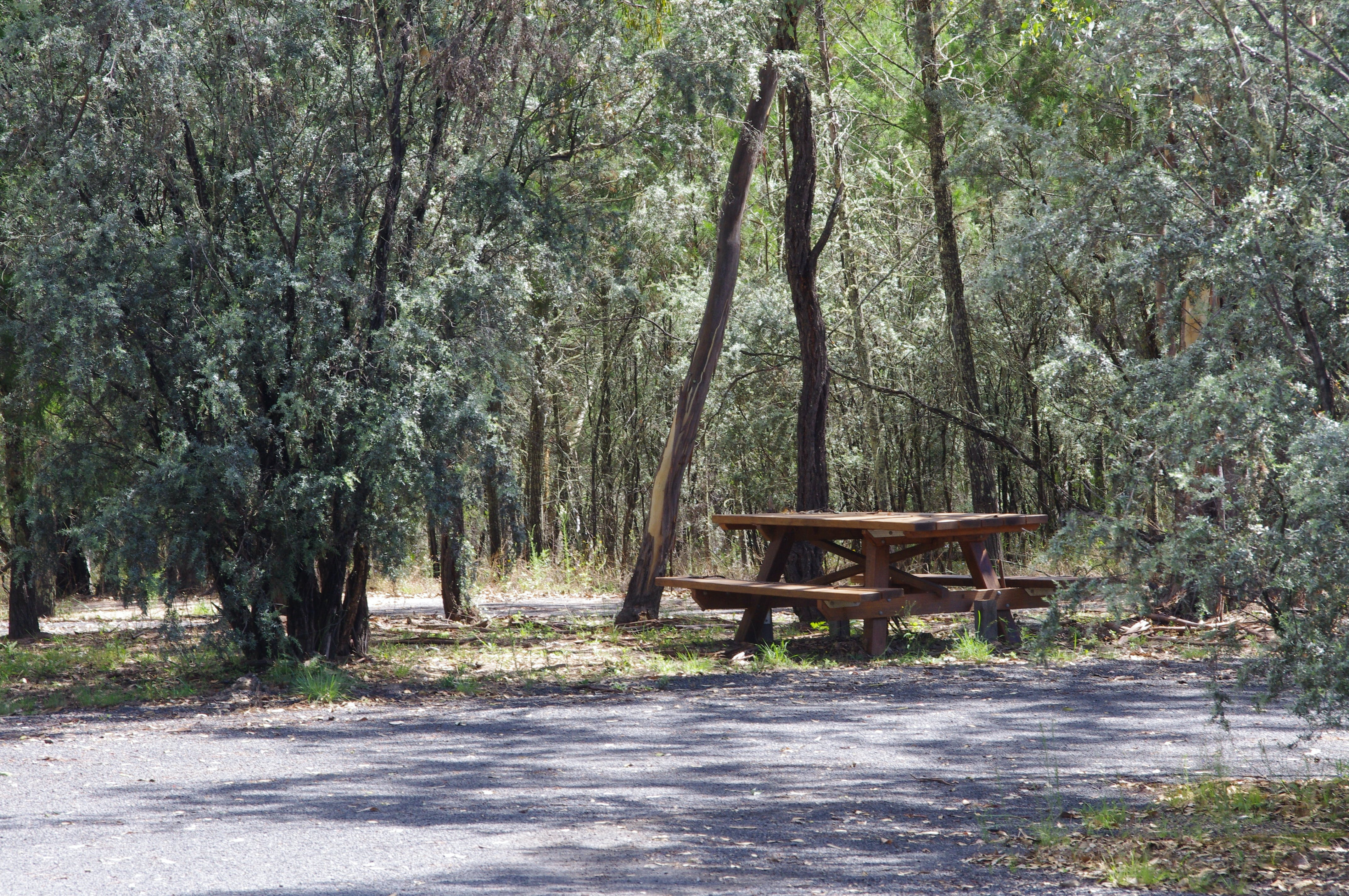 Goonoowigall State Conservation Area - Find Attractions