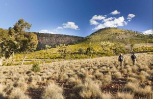 Little Mountain Walking Track - Find Attractions