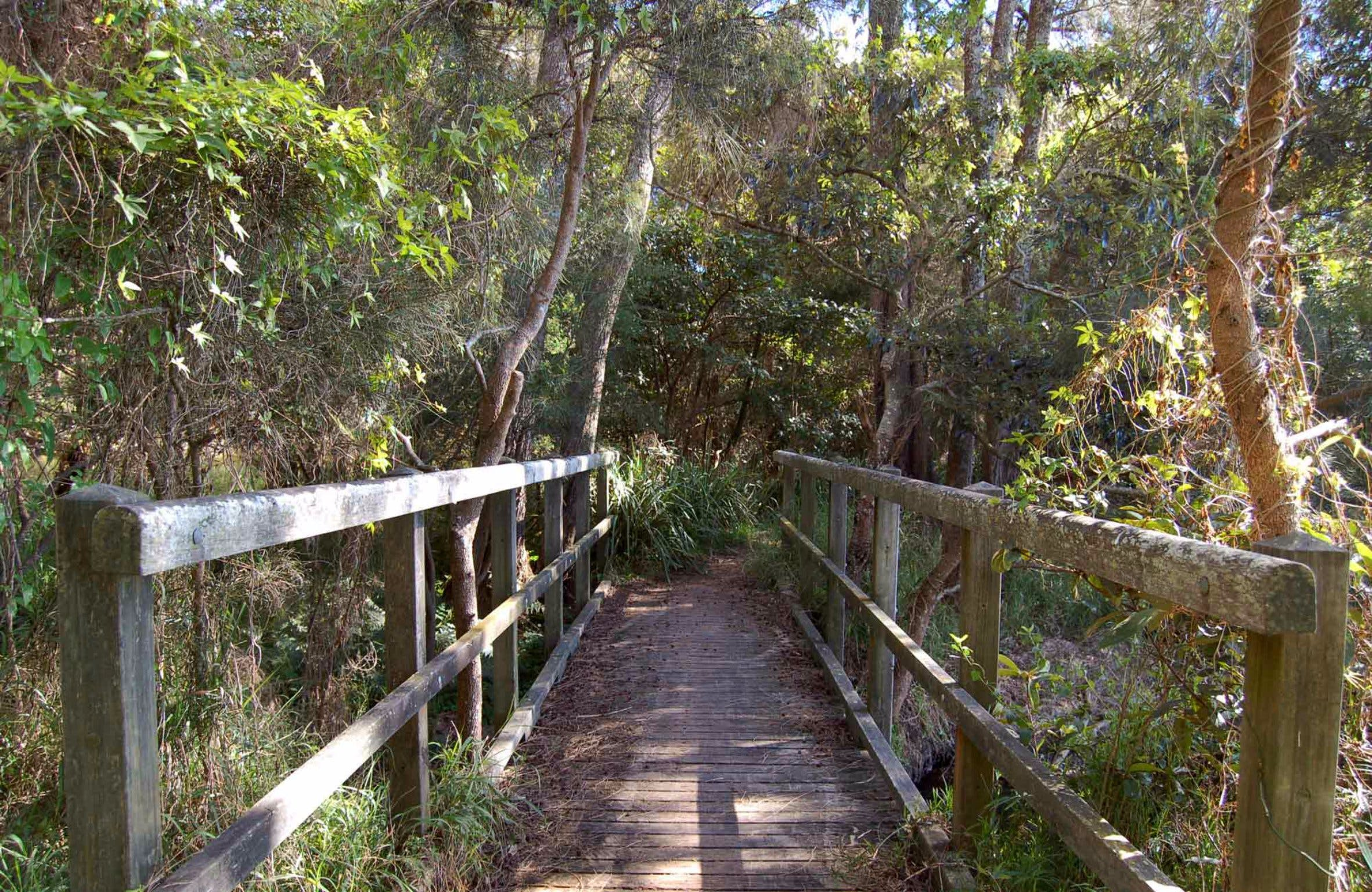 Awaba Bay Foreshore Walk - Find Attractions