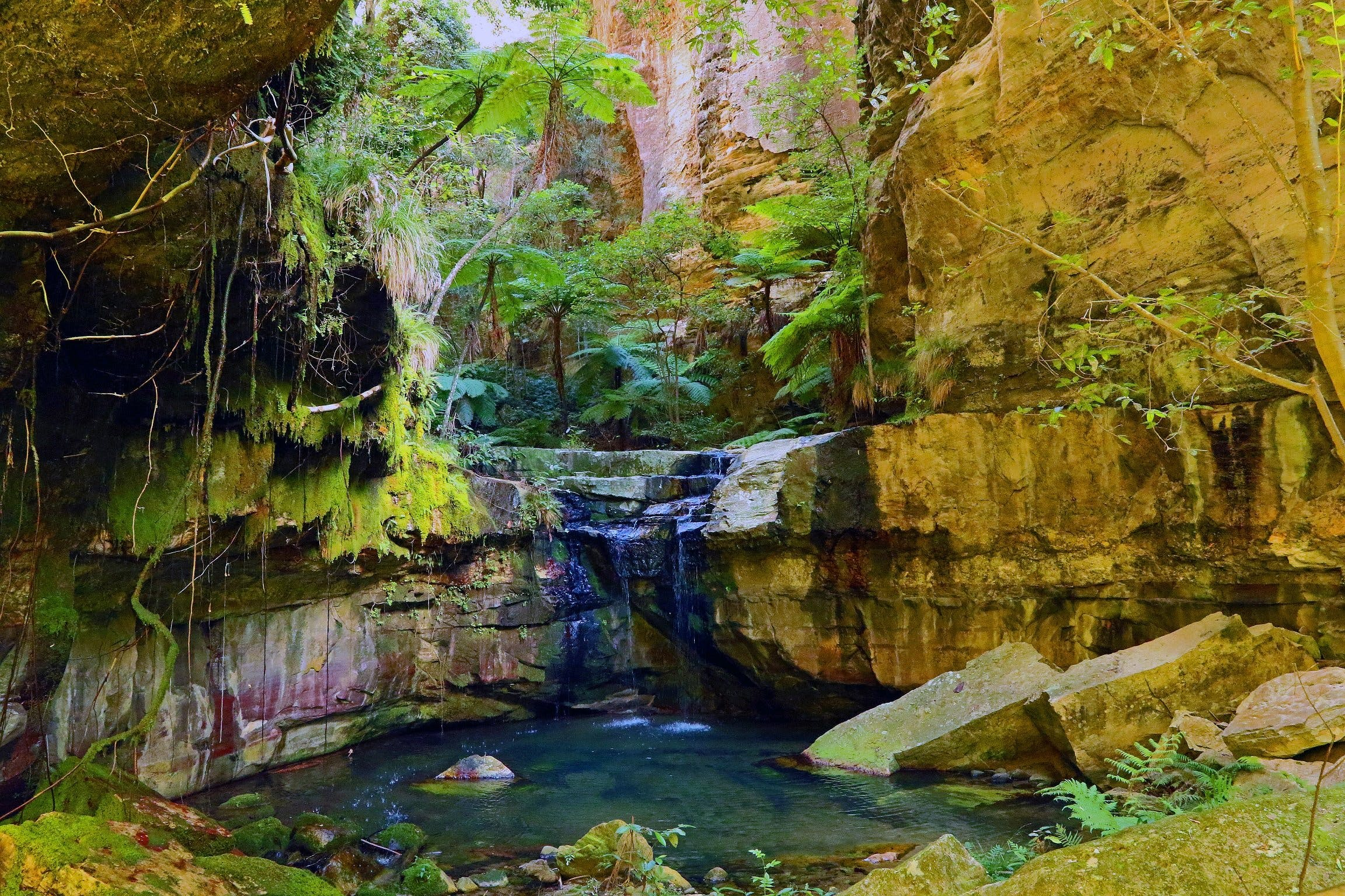 Glimpse of the Outback 5 Day Tour - Roma and Surrounds - Find Attractions